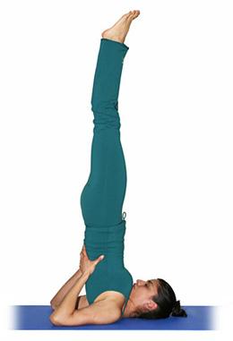 yoga vela